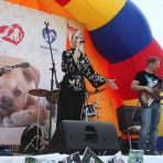 Благотворительный фестиваль «Мир бездомных животных – мир надежды и мечты»