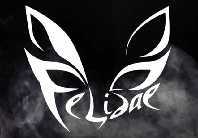 "Felidae - релиз клипа ""Посмотри на меня"""