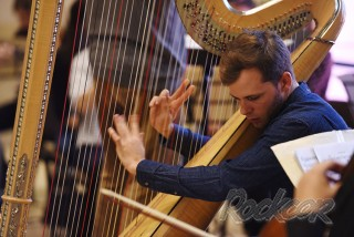 Фанаты «Гарри Поттера» услышали музыку из любимого фильма в исполнении арфы с оркестром.