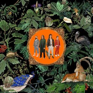 Британские рокеры Don Broco выпускают альбом 'Amazing Things'